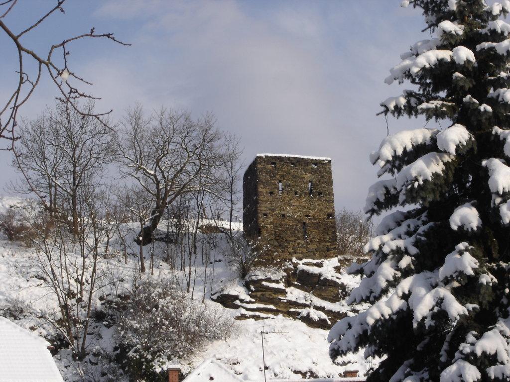 "Ruine ""Taubenfang"" - Langenlois (Obere Stadt) - Langenlois, Niederösterreich (3550-NOE)"