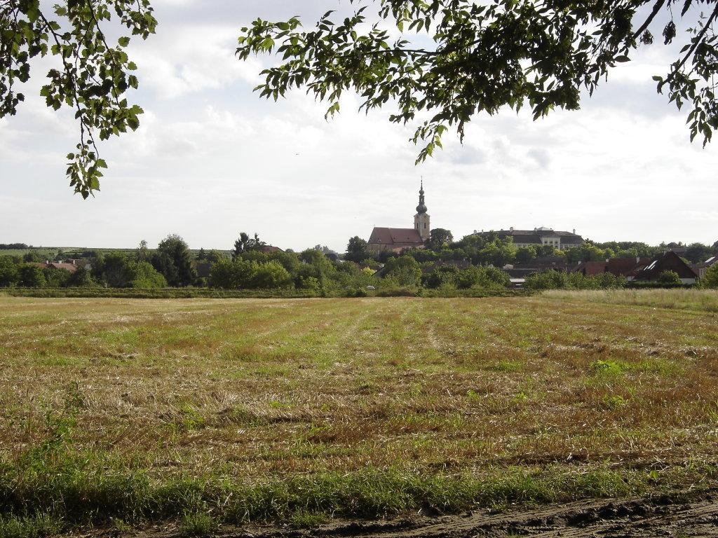 Blick zur Pfarrkirche und Schloss Gobelsburg. - Gobelsburg, Niederösterreich (3550-NOE)
