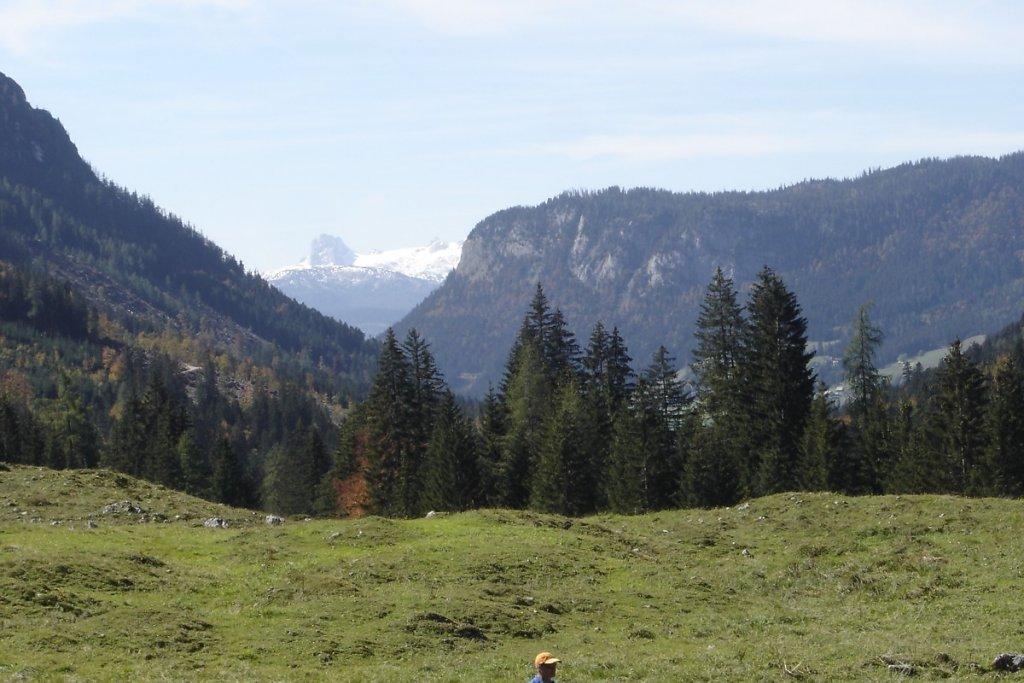 Dachsteinblick von der Gnanitzalm - Tauplitz, Steiermark (8982-STM)
