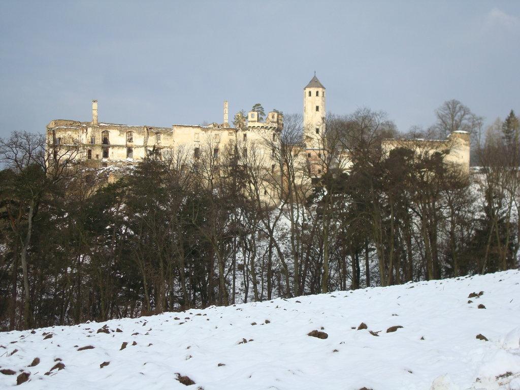 Ruine Hohenegg - Hohenegg, Niederösterreich (3386-NOE)