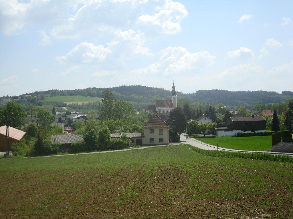 Blick nach Pichl bei Wels - Pichl bei Wels, Oberösterreich (4632-OOE)