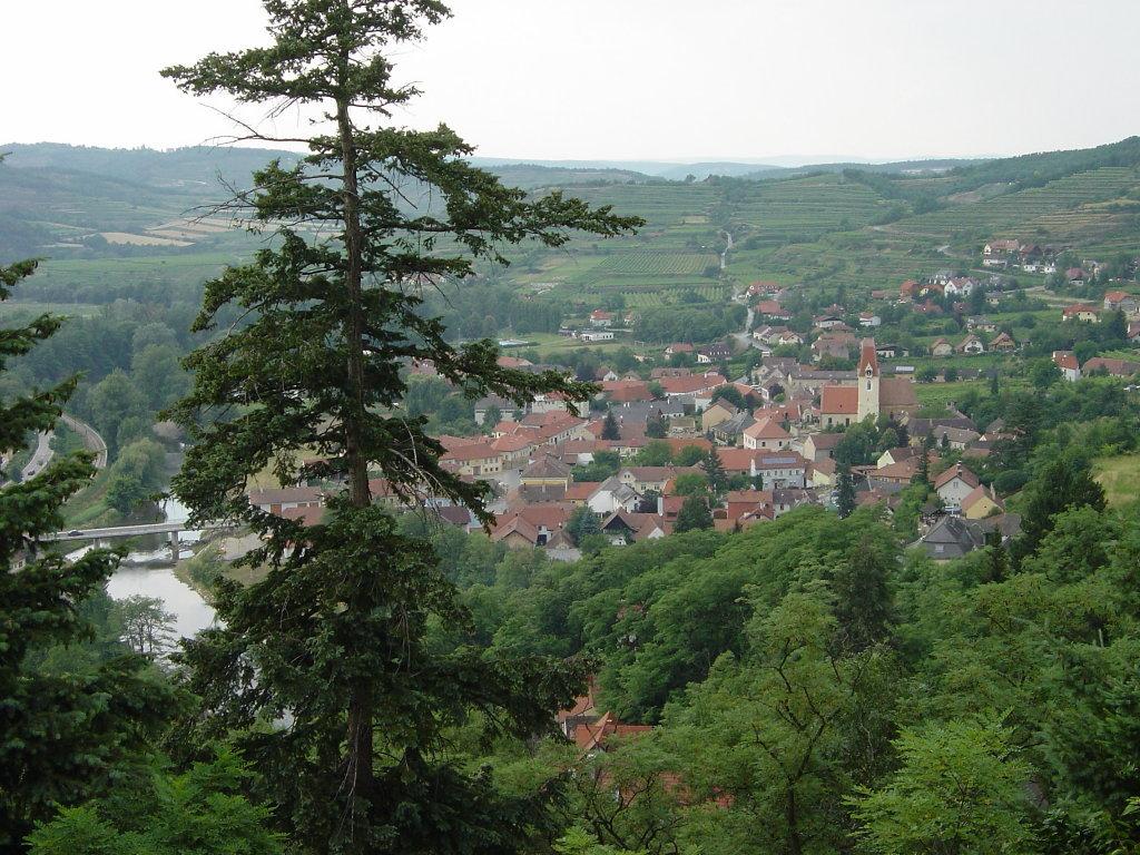 Blick auf Schönberg am Kamp - Schönberg, Niederösterreich (3562-NOE)
