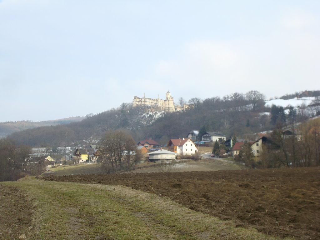 Blick zur Ruine Hohenegg - Hohenegg, Niederösterreich (3386-NOE)