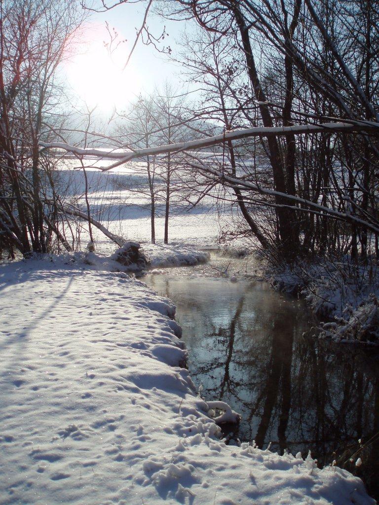 Kleiner Fluss im Winter - Windhag, Oberösterreich (5351-OOE)