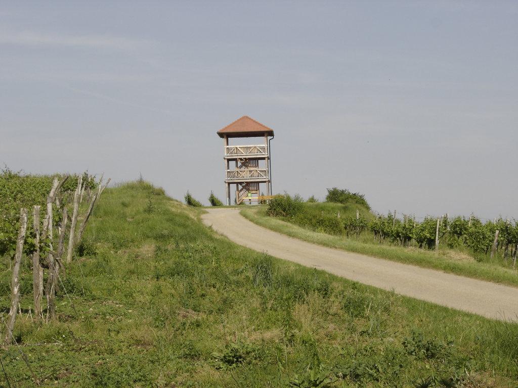 Die Engerbrunner Aussichtswarte auf der Haide. - Engabrunn, Niederösterreich (3492-NOE)