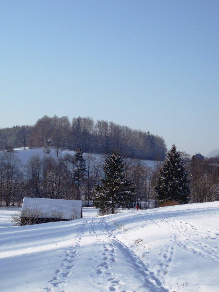 ...einsame Heuhütte... - Windhag, Oberösterreich (5351-OOE)