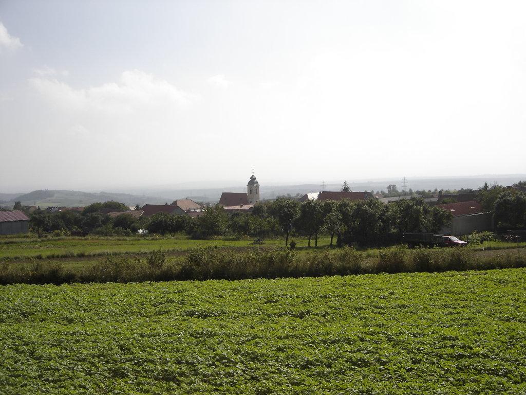 Bergweinort Mittelberg - Mittelberg, Niederösterreich (3550-NOE)