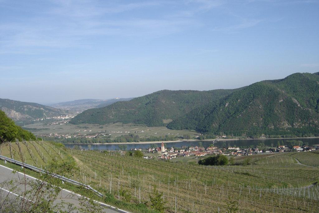 Blick auf Weißenkirchen bzw. Wachau von der Seiberer Straße - Weißenkirchen in der Wachau, Niederösterreich (3610-NOE)