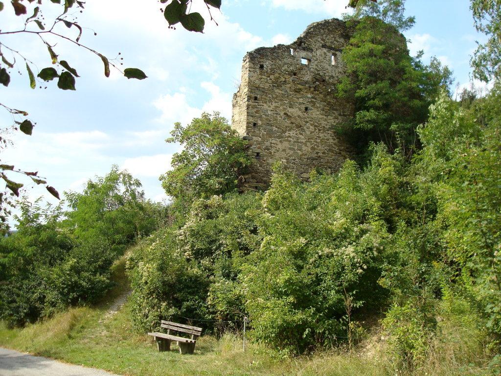 Ruine Schonenburg bei Schönberg - Schönberg, Niederösterreich (3562-NOE)