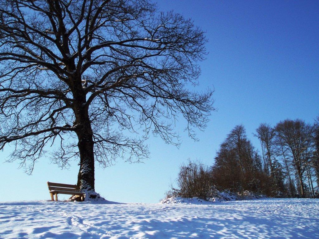 Aussichtspunkt im Winter - Windhag, Oberösterreich (5351-OOE)