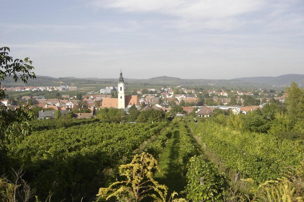 Weinstadt Langenlois - Langenlois, Niederösterreich (3550-NOE)