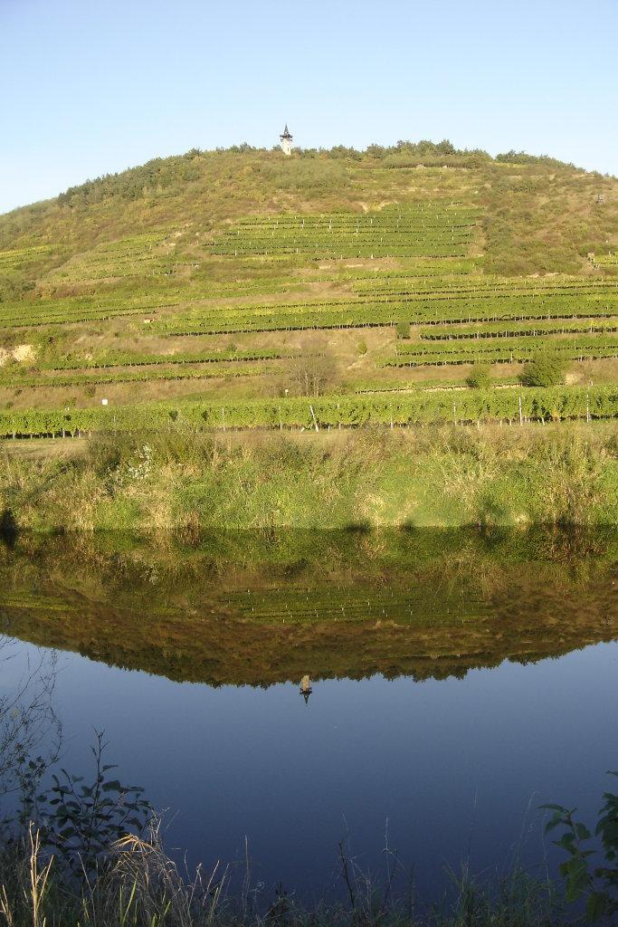 Der Heiligenstein mit der Kamptalwarte, vom Kamp bei Langenlois aus gesehen. - Langenlois, Niederösterreich (3550-NOE)