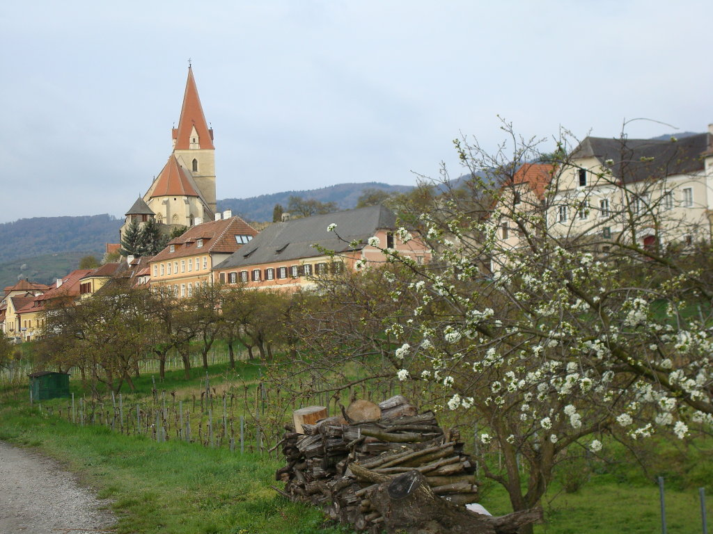 Weißenkirchen in der Wachau - Weißenkirchen in der Wachau, Niederösterreich (3610-NOE)