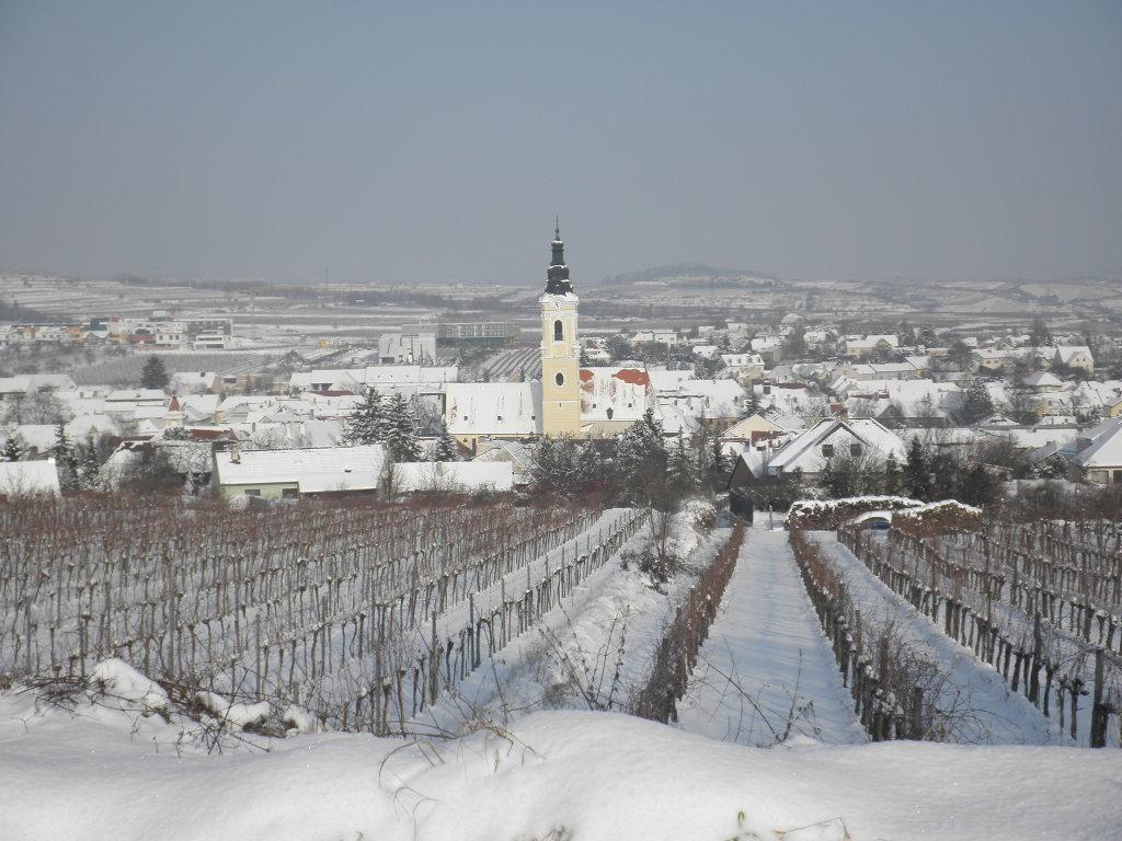 Die Weinstadt Langenlois im Winterkleid - Langenlois, Niederösterreich (3550-NOE)