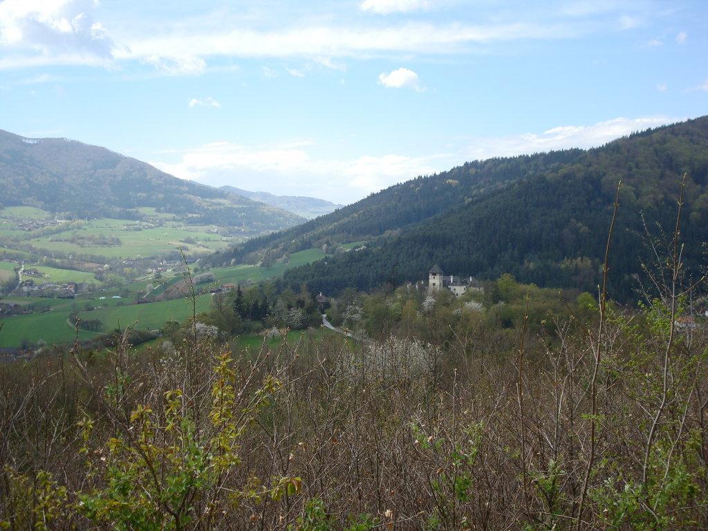 Fernblick zur Burg Ranna - Oberranna, Niederösterreich (3622-NOE)