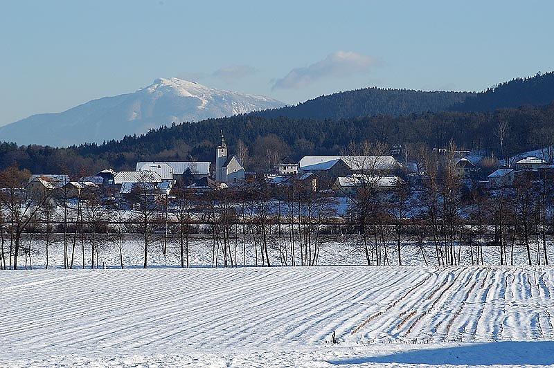 Arntdorf mit der Petzen im Hintergrund - Arndorf, Kärnten (9063-KTN)