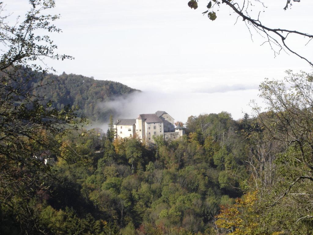 Burg Plankenstein - Plankenstein, Niederösterreich (3242-NOE)