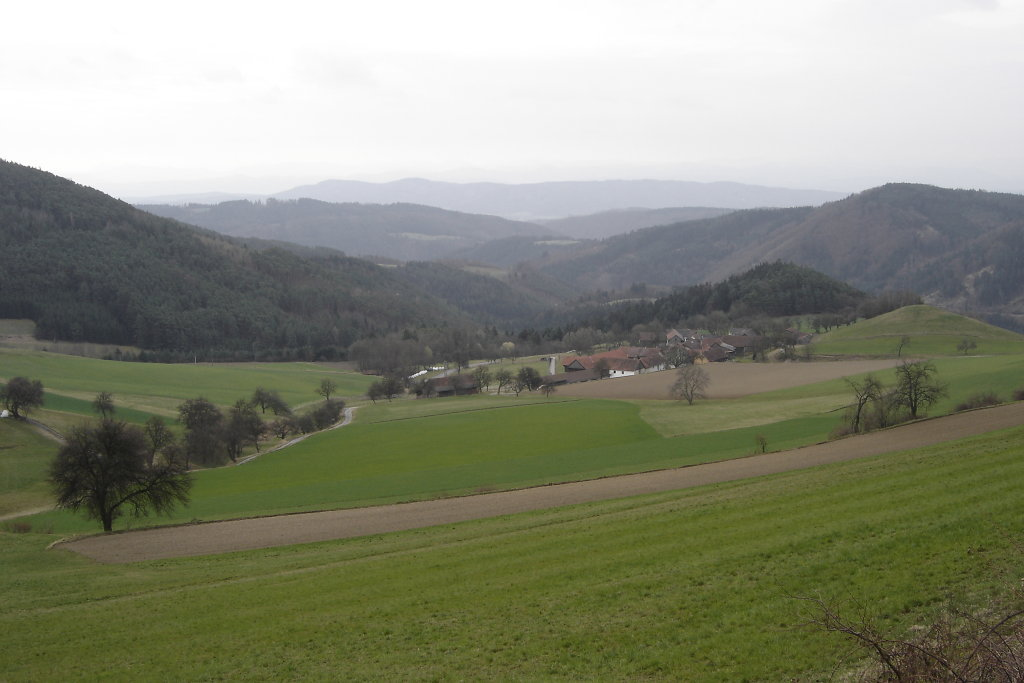 Blick nach Eibetsberg - Eibetsberg, Niederösterreich (3653-NOE)