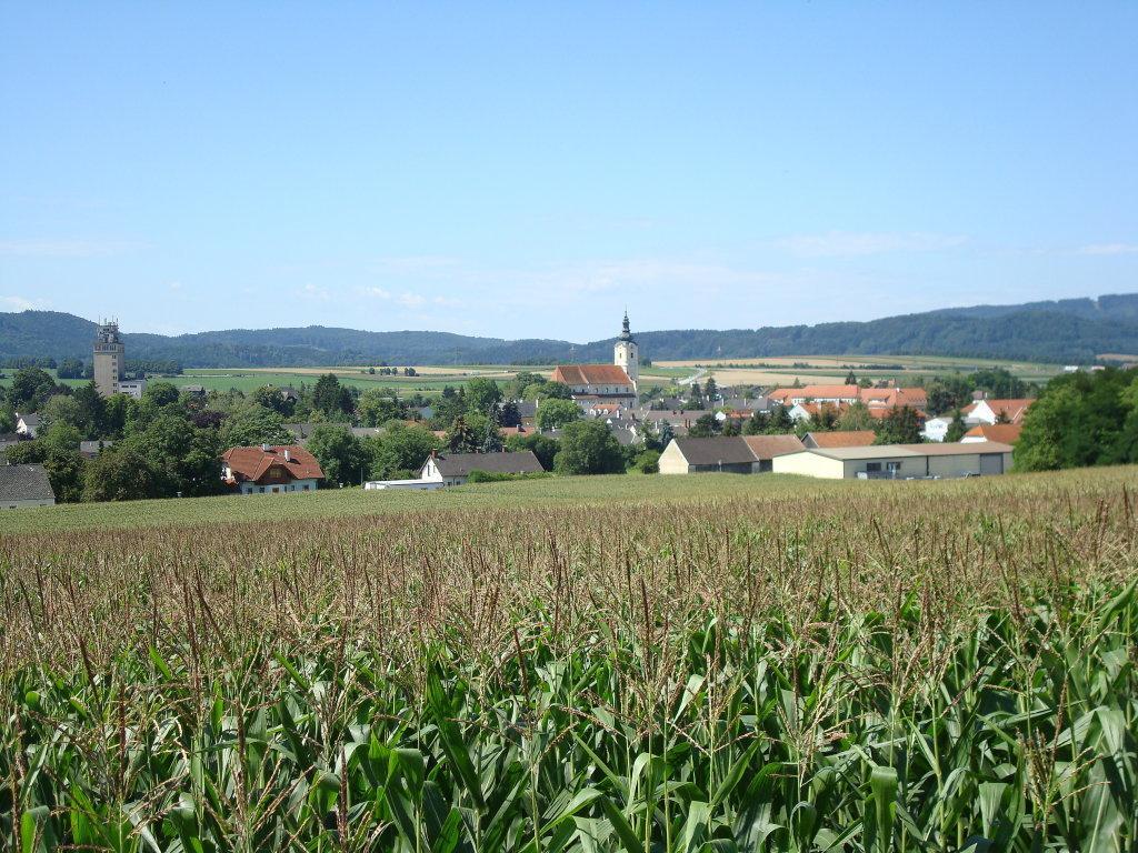 Blick nach Loosdorf - Loosdorf, Niederösterreich (3382-NOE)
