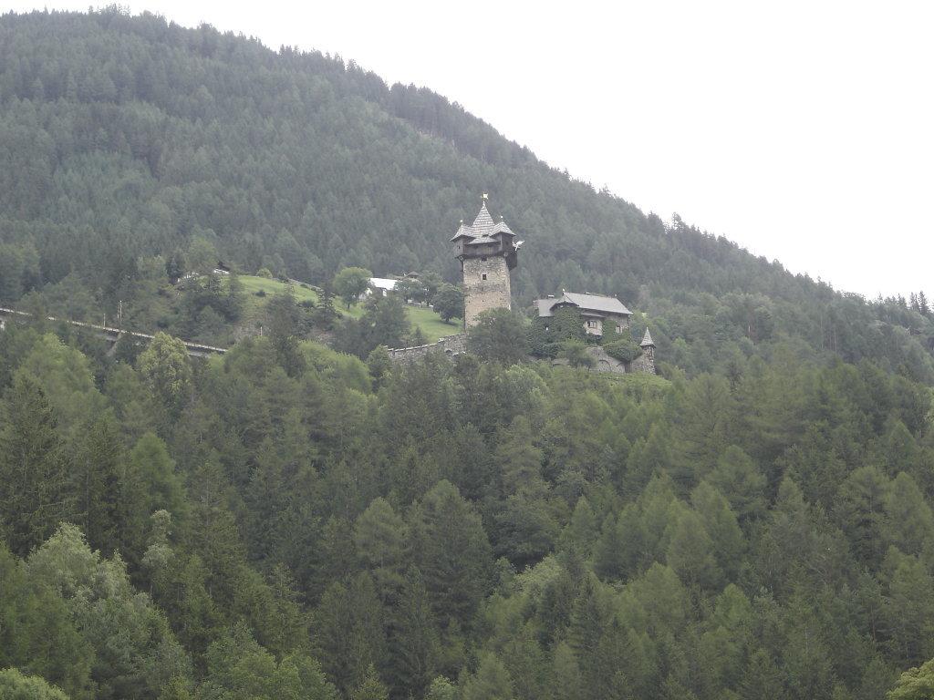 Blick zur Burg Nieder Falkenberg bei Pfaffenberg - Pfaffenberg, Kärnten (9821-KTN)