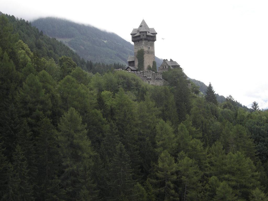 Blick zur Burg Nieder Falkenstein bei Pfaffenberg - Pfaffenberg, Kärnten (9821-KTN)