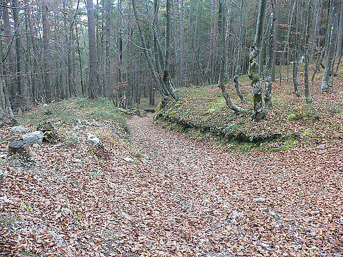 Wanderwg zur Kapelle - Maria Elend, Kärnten (9182-KTN)
