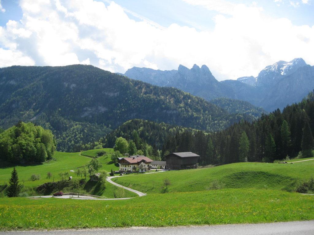 schöner Besuch - Unkenberg, Salzburg (5091-SBG)