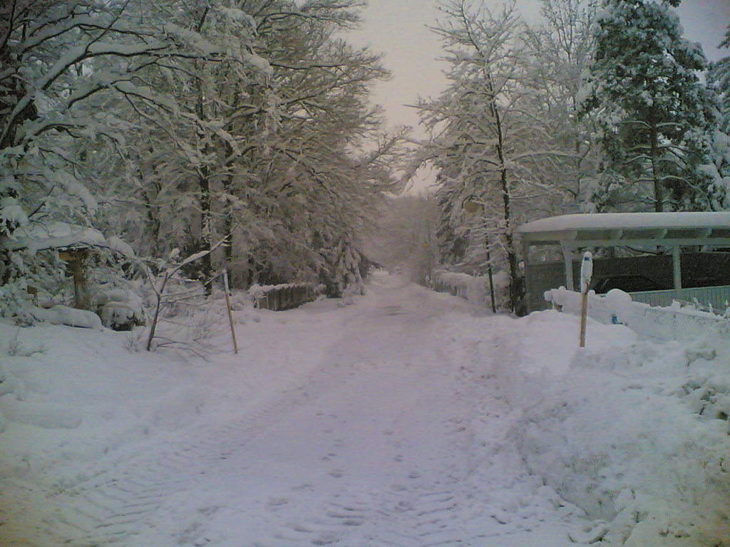 Maderspergergasse im Winter - Maderspergergasse, Niederösterreich (3040-NOE)