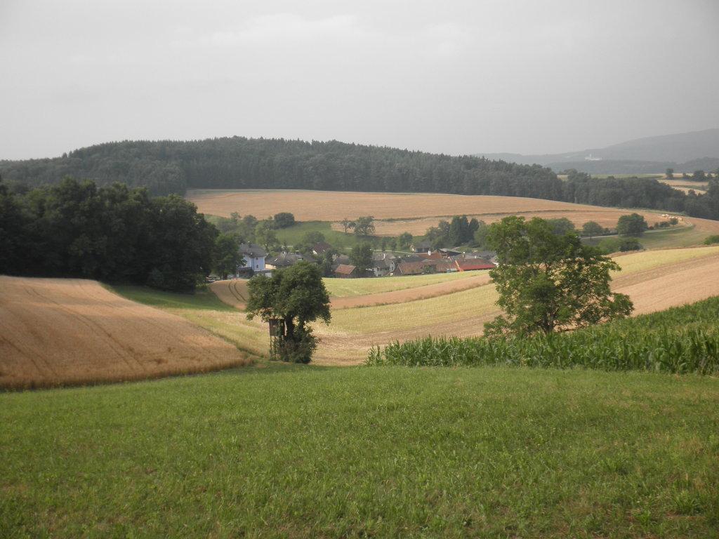 Blick nach Thal - Thal, Niederösterreich (3382-NOE)