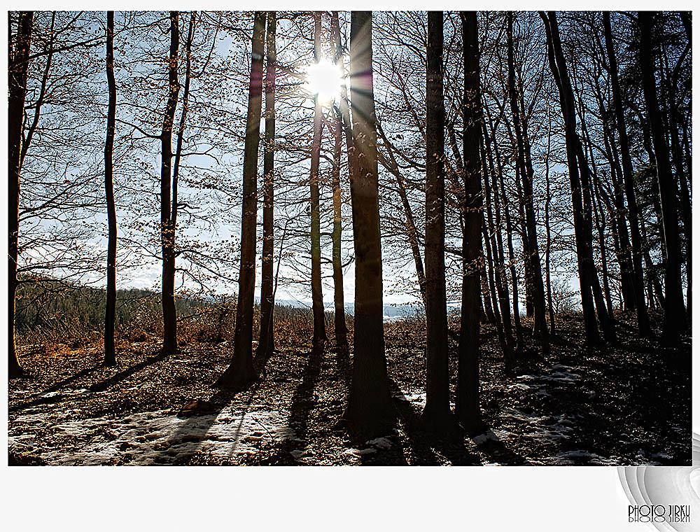 Winter im Böheimkirchen.. - Böheimkirchen, Niederösterreich (3071-NOE)