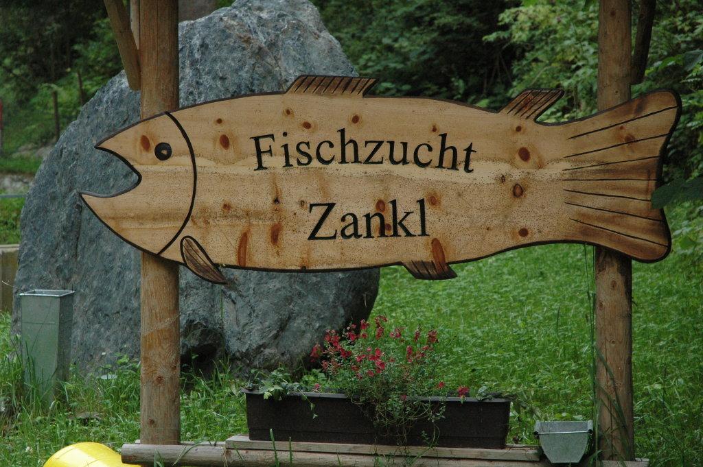 Fischzucht Zankl - Weidenburg, Kärnten (9635-KTN)