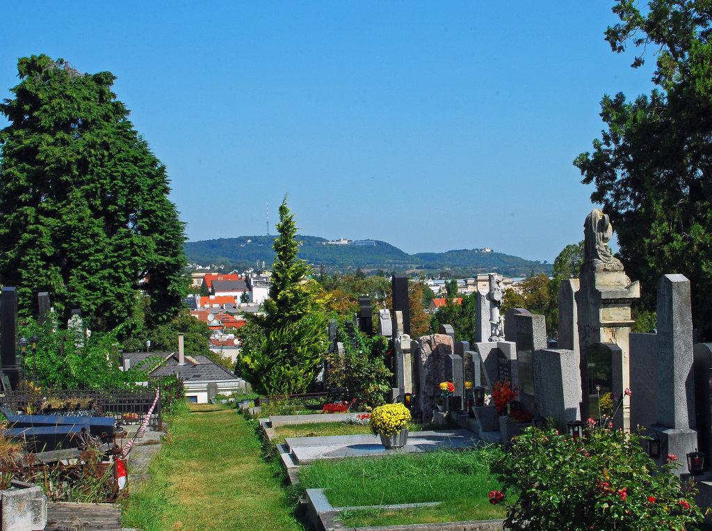 Blick vom Friedhof Gersthof auf Kahlenberg und Leopoldsberg. - Gersthofer Friedhof, Wien (1180-W)