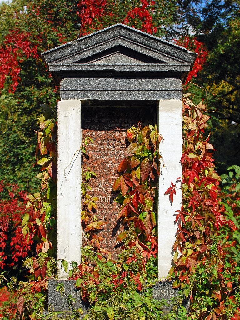 Herbst am Wiener Zentralfriedhof, alte jüdische Abteilung - Wien Stadt (1010-W)