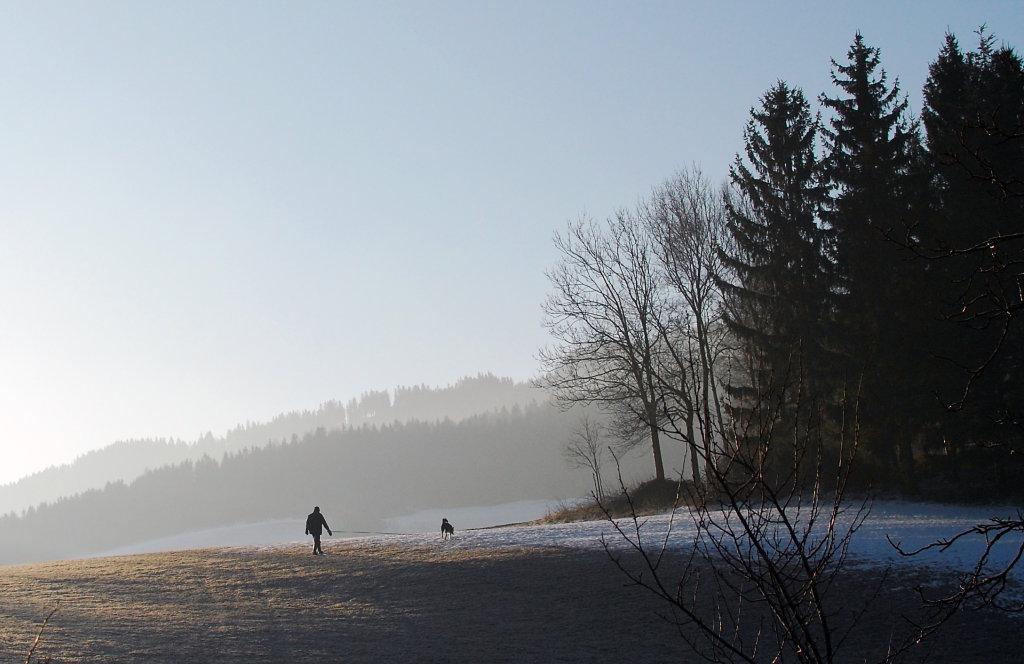Morgendliche Winterstimmung in Schachen bei Vorau. - Schachen bei Vorau, Steiermark (8250-STM)