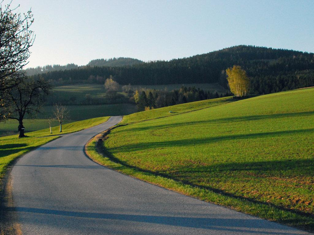 Schachen bei Vorau, Morgenstimmung. - Schachen bei Vorau, Steiermark (8250-STM)