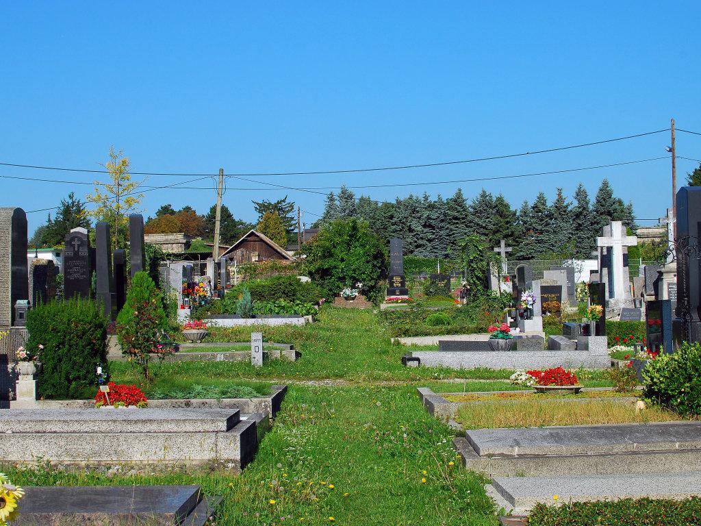 Friedhof Gersthof, Blick in Richtung Schafberghöhe - Gersthofer Friedhof, Wien (1180-W)