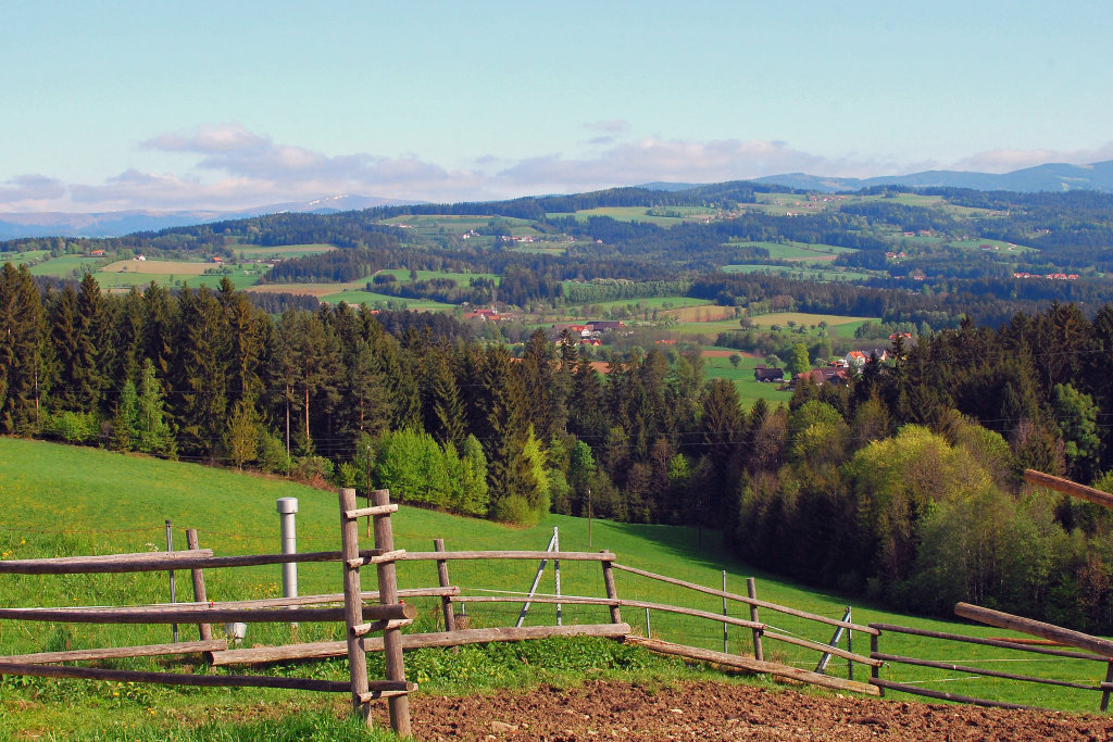 Ausblick, Schachen bei Vorau, Oststeiermark, Sommer 2011 - Schachen bei Vorau, Steiermark (8250-STM)