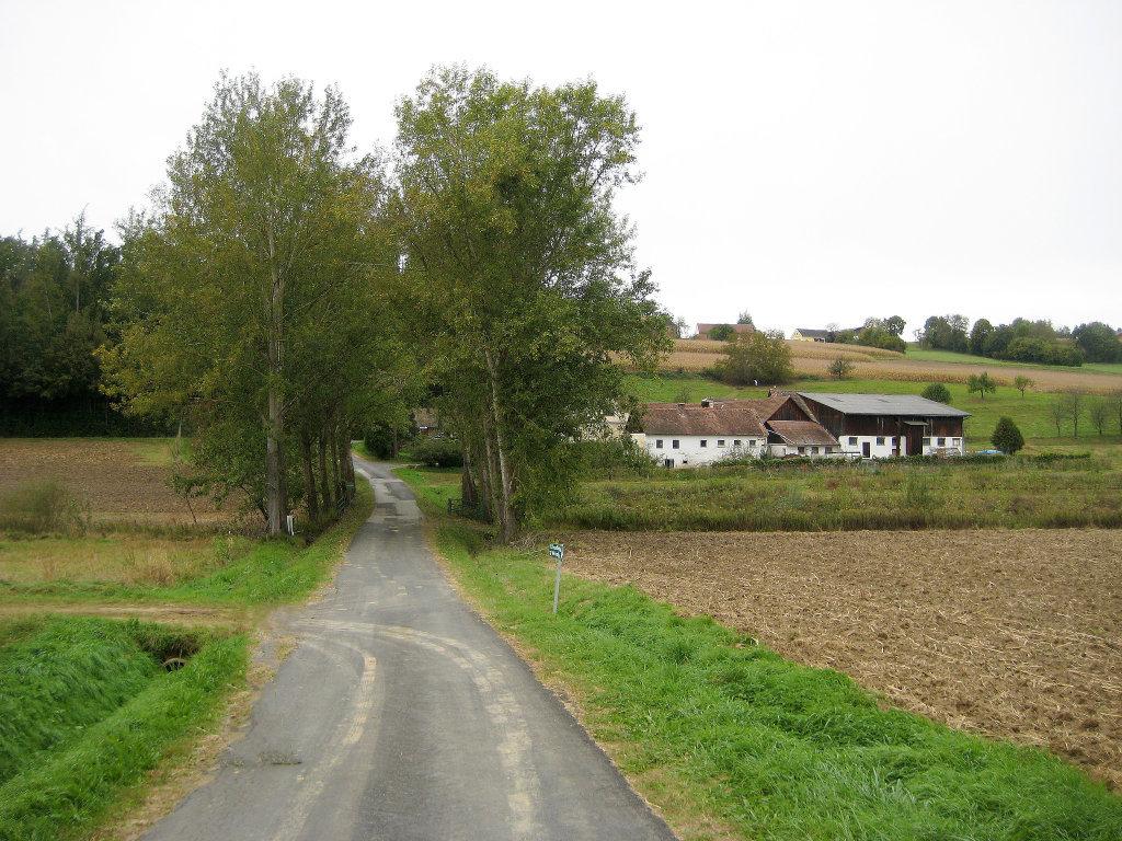Aussiedlerhof am Kunstwanderweg im Uhudlerviertel am 6.10.2011 - Am Hochkogel, Burgenland (7562-BGL)