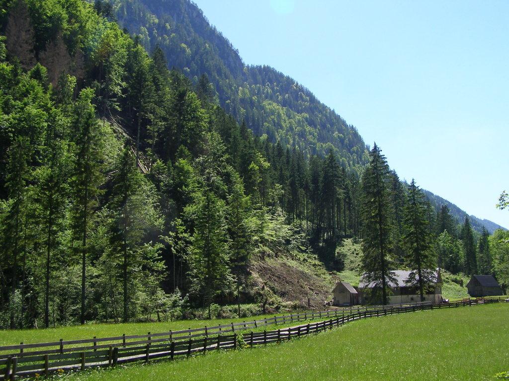"""8924 Wildalpen Rotmoos befindet sich am Fuße der """"Bösen Wand"""", und liegt auf halber Strecke zwischen Wildalpen und Hinterwildalpen. - Rotmoos, Steiermark (8924-STM)"""