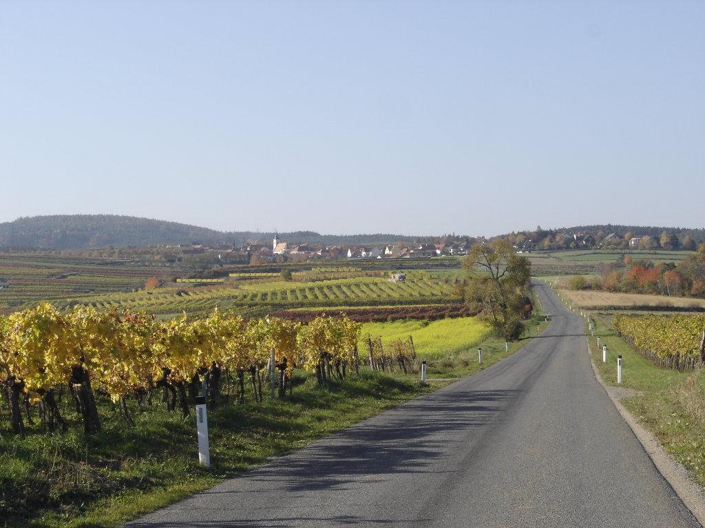Fernblick nach Mittelberg - Mittelberg, Niederösterreich (3550-NOE)