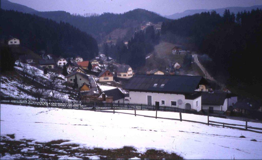 Blick in den Freisinggraben - Piberegg Rollsiedlung, Steiermark (8572-STM)