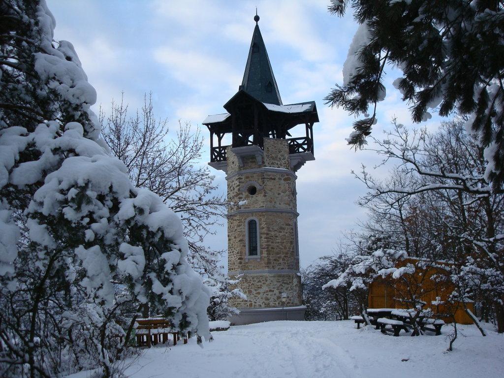 Die Kamptalwarte auf dem Heiligenstein-Berg, im Winterkleid. - Zöbing, Niederösterreich (3550-NOE)