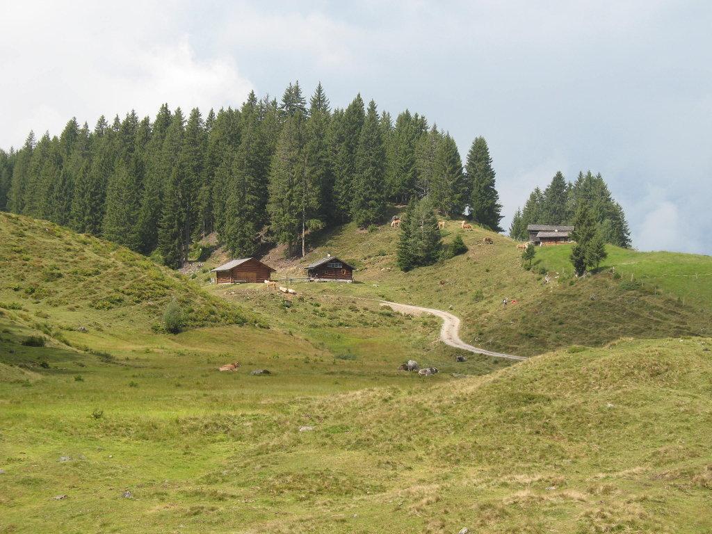Hora Alpe Sept. 2010 - Hora, Vorarlberg (6774-VBG)