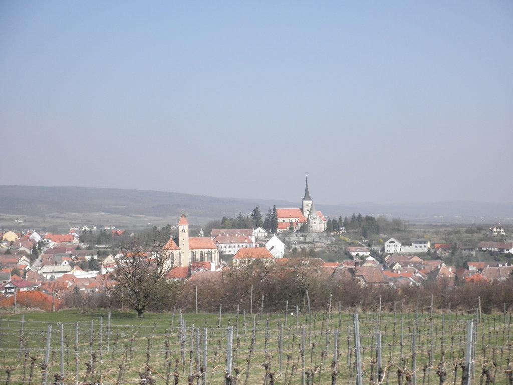 Blick auf Pulkau - Pulkau, Niederösterreich (3741-NOE)