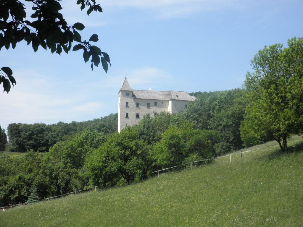 Burg Wildegg bei Sittendorf - Sittendorf, Niederösterreich (2393-NOE)