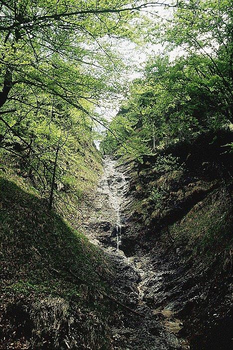 Wasserfall auf dem Untersberg - Großgmain, Salzburg (5084-SBG)