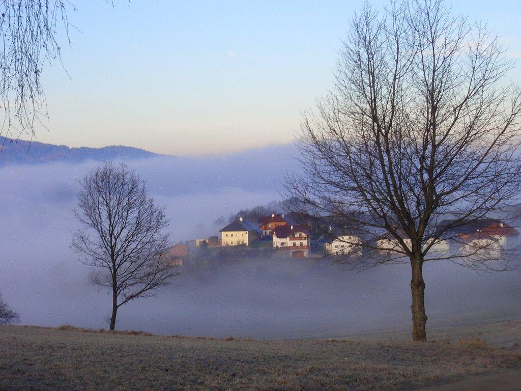 Sattling im Nebel, 2010 - Sattling, Oberösterreich (4170-OOE)