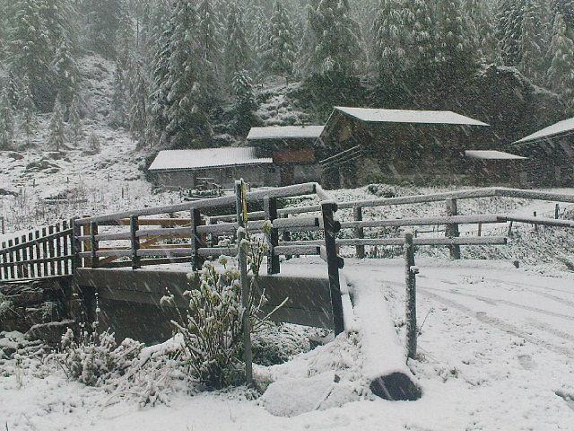 Wintereinbruch im Landecktal (25.Sep 2010) bei Matrei in Osttirol. - Landeckalm, Tirol (9971-TIR)
