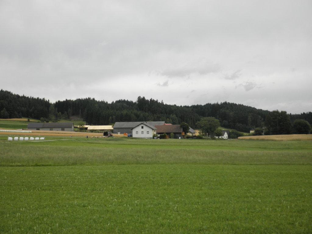 Fernblick nach Kasbach - Kasbach, Niederösterreich (3921-NOE)