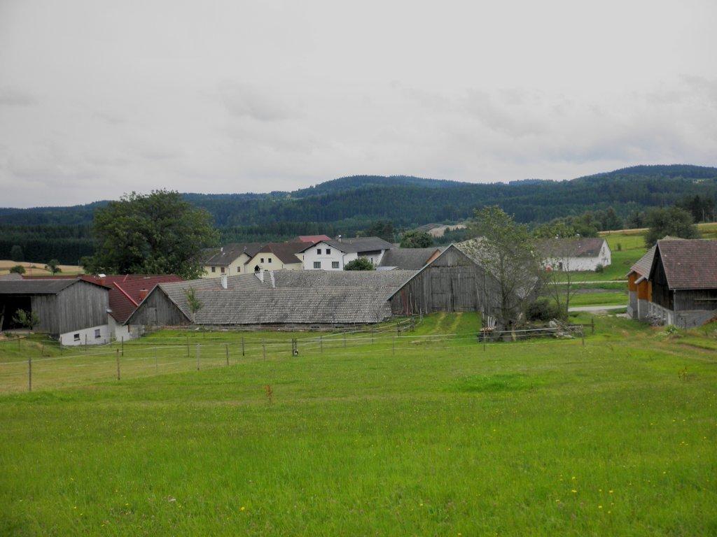 Blick auf Kasbach - Kasbach, Niederösterreich (3921-NOE)